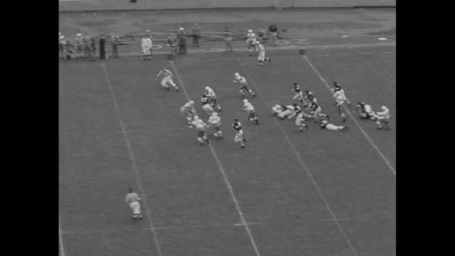 vídeos de stock e filmes b-roll de high angle wide shot of northwestern university marching band spelling out cats on field at ryan field / 1st quarter northwestern kicks off to ohio... - primeiro quarto de tempo