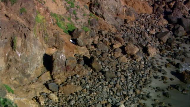 vídeos de stock e filmes b-roll de high angle wide shot pan waves crashing on rocky beach/ malibu, california - pacífico norte