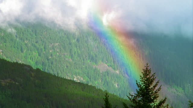 high angle wide shot rainbow and mist over forest-covered mountainside / british columbia, canada - rainbow stock videos and b-roll footage