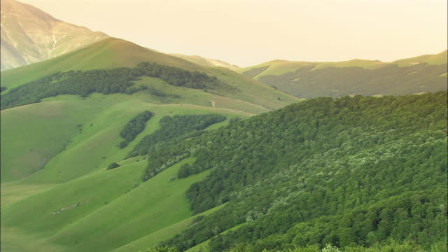 high angle wide shot trees and green valley/ norcia - ウンブリア州点の映像素材/bロール