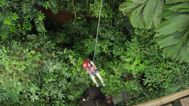 high angle wide tracking shot of woman ziplining to rain forest floor / quepos, puntarenas, costa rica - ロープスライダー点の映像素材/bロール