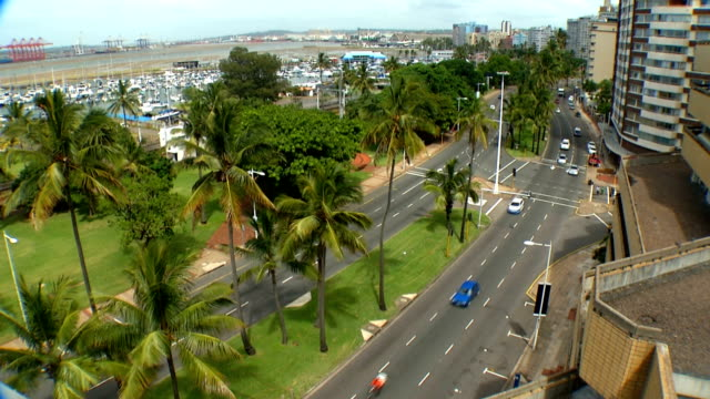 high angled shot of cars driving along palm tree lined streets/ durban/ south africa - durban stock videos and b-roll footage