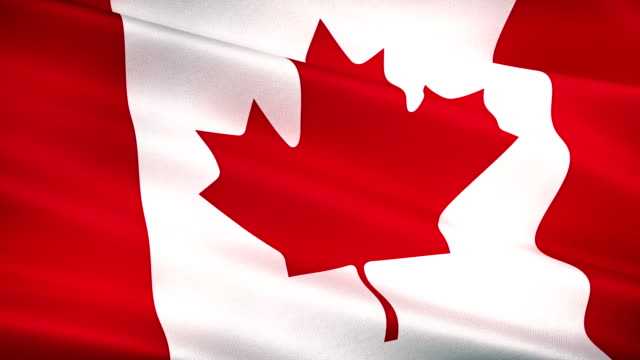 high detail canada canadian flag seamless loop - traditionally canadian stock videos & royalty-free footage