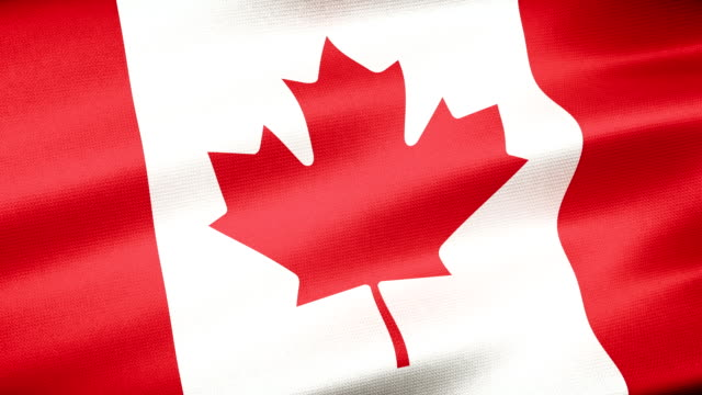 high detail canada flag seamless loop - bandiera del canada video stock e b–roll