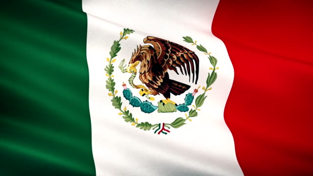 high detail mexican flag seamless loop - flag stock videos & royalty-free footage