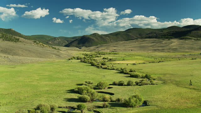 high drone flight over cattle grazing on ranch in rocky mountains - gunnison stock videos & royalty-free footage