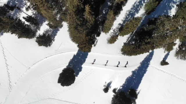 a high drone view of four skiers in a classic cross country skiing style - aspen tree stock videos & royalty-free footage