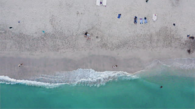 high drone view of south beach in miami beach, florida, usa. - boulevard stock videos & royalty-free footage