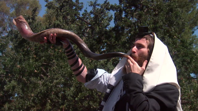 high holiday shofar - judaism stock videos & royalty-free footage