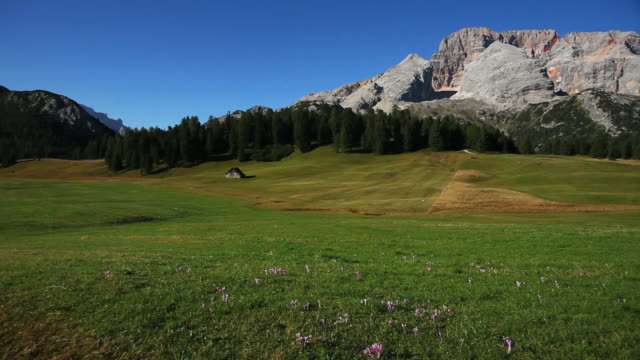 HD High mountain pasture in late summer PAN