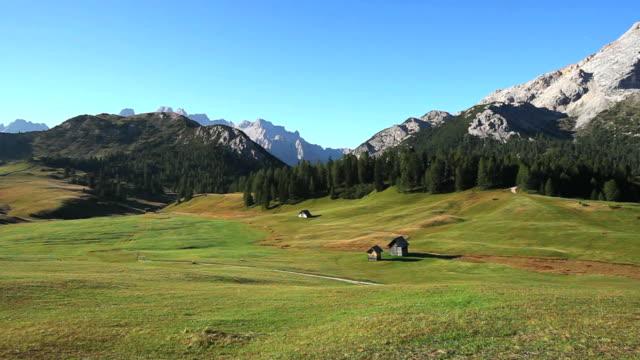 HD High Mountain Viehweide in den Alpen (Schwenken)
