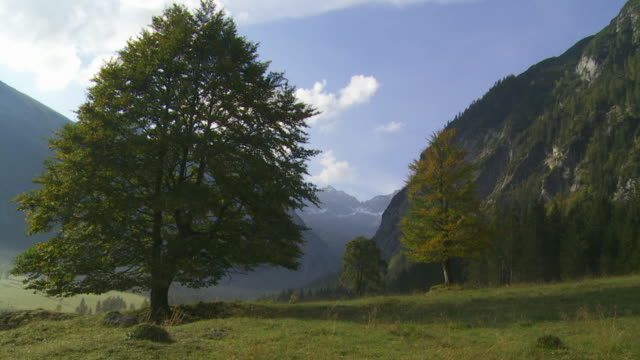 hd high mountain valley (panning) - herbst stock videos & royalty-free footage