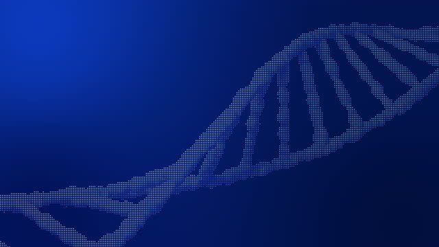 high resolution 3d video, on which the dna and rna chain is in movement. - westernisation stock videos & royalty-free footage