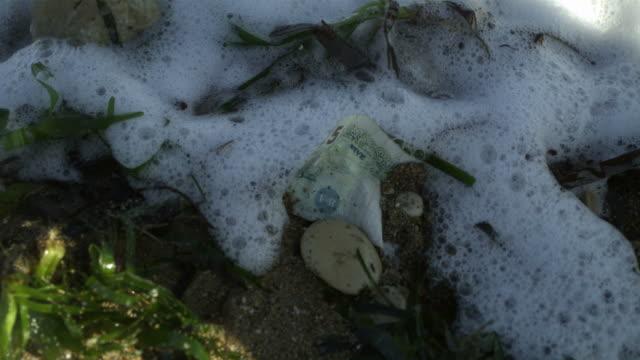 vídeos y material grabado en eventos de stock de high speed five pound note on shore washed over by sea - símbolo de la libra esterlina
