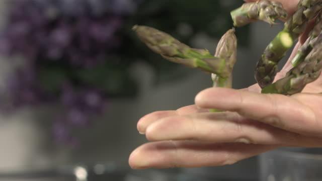 vídeos y material grabado en eventos de stock de high speed hand releases asparagus tips - potasio