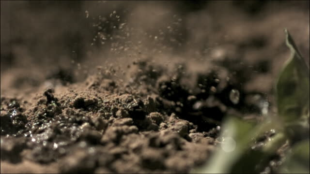 high speed rain falling on earth - terreno video stock e b–roll