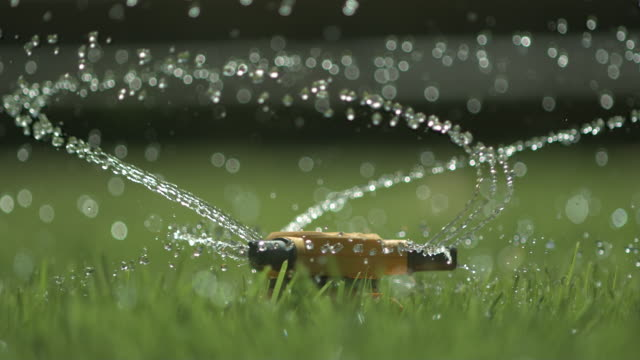 high speed sprinkler - prato rasato video stock e b–roll
