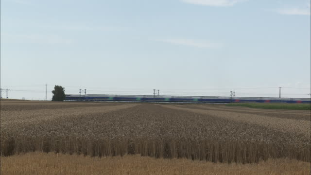 stockvideo's en b-roll-footage met high speed train - wheat field - horizon