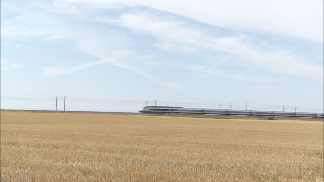 High speed train - Wheat field