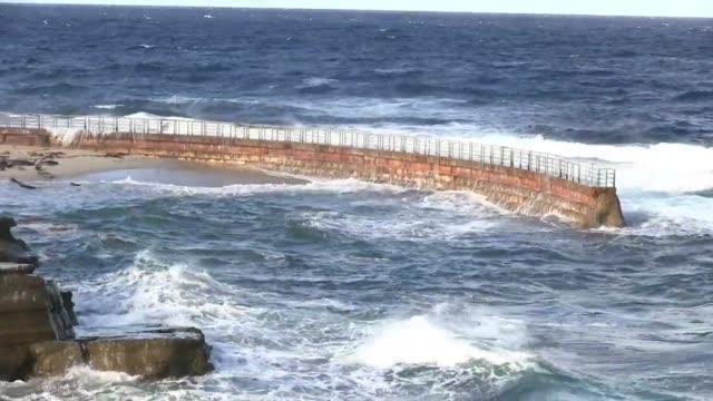 vidéos et rushes de high tides at la jolla - pataugeoire