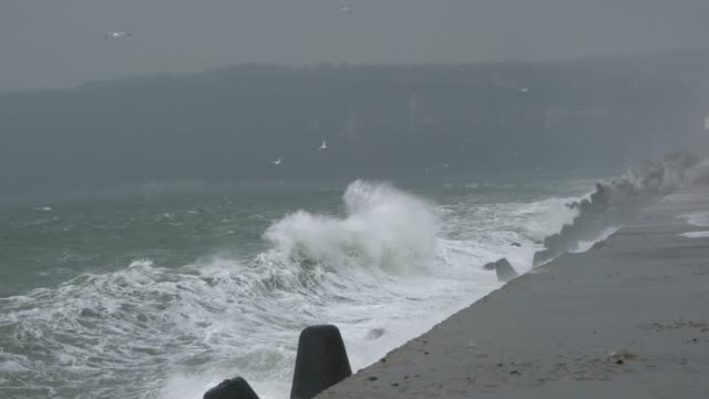 vídeos de stock e filmes b-roll de high winds and big waves breaking over a breakwater during a severe sea storm - docas