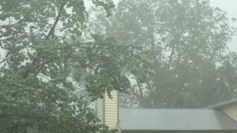 vídeos y material grabado en eventos de stock de vientos, cayendo pesado lluvia tormenta granizo llenado de agua calles denver colorado - tormenta tiempo atmosférico