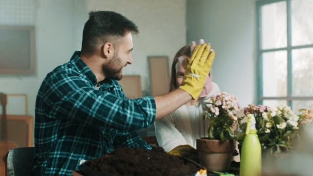 high-five! - gardening equipment stock videos & royalty-free footage