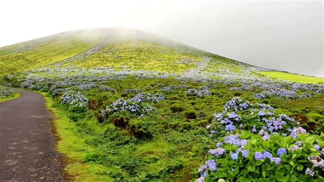 ハイランドのフローレス島でアゾレス諸島/ポルトガル