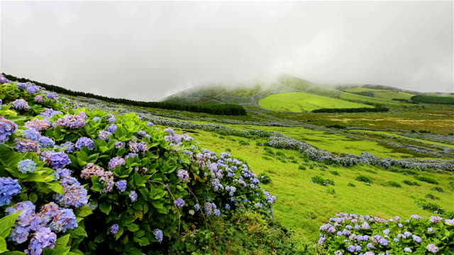highlands of flores island on azores / portugal - plateau stock videos and b-roll footage