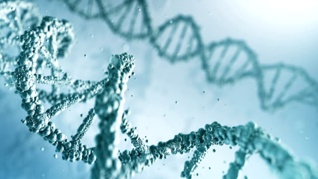 highly detailed dna (bright) - loop - biomedical animation stock videos & royalty-free footage