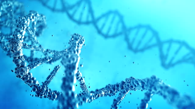 highly detailed dna (blue) - loop - genetic research stock videos & royalty-free footage