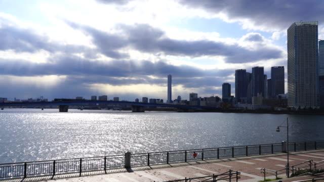 high-rise apartments and harumi ohashi bridge at harumi ward beyond the harumi canal, which image was captured from toyosu park at koto, tokyo, japan. - 運河点の映像素材/bロール