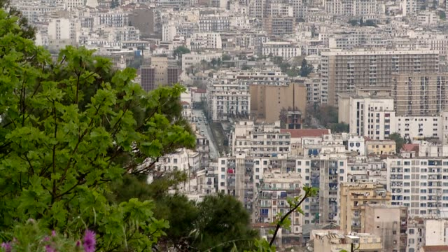 High-rise buildings fill downtown Algiers. Available in HD.