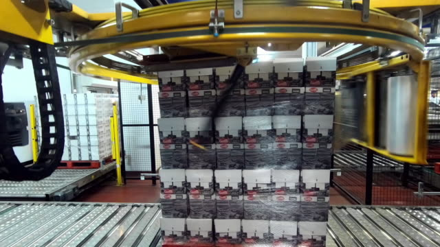 high-tech machinery packs boxes for distribution - box container stock videos & royalty-free footage