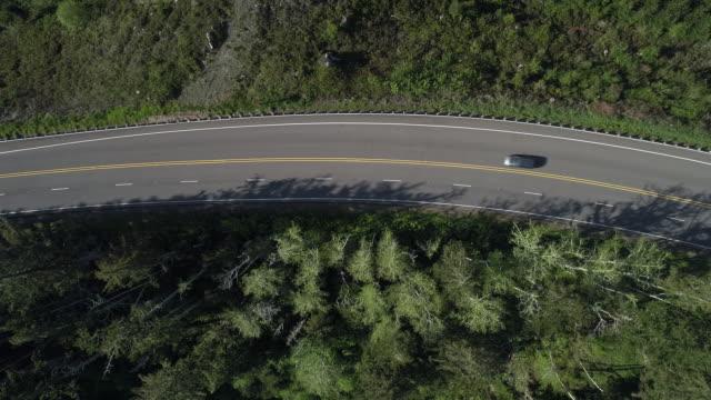 春の早朝、オレゴン州リードスポート近くの森林地帯にある高速道路101「パシフィックコースト風光明媚なバイウェイ」。下を見下ろすと、パンカメラの動きで空中ドローンビデオの真上。 - オレゴン州点の映像素材/bロール
