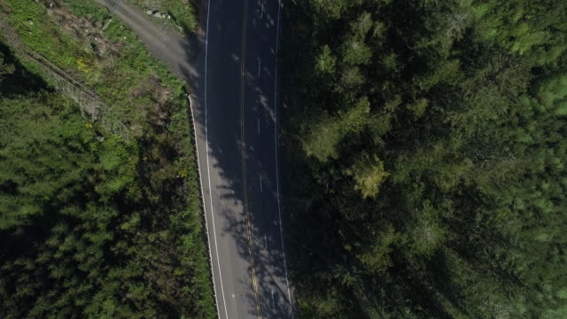 """vidéos et rushes de autoroute 101 """"pacific coast scenic byway"""" dans les montagnes boisées à proximité reedsport, oregon, au petit matin au printemps. en regardant vers le bas, directement au-dessus de la vidéo drone aérien avec le mouvement de la caméra panoramique. - grands axes de circulation"""