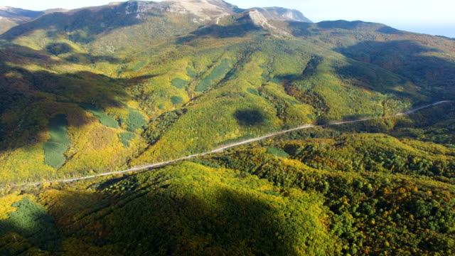 aerial: highway in mountain forest - chiaroscuro stock videos and b-roll footage