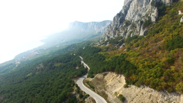 AERIAL: Highway in mountain forest