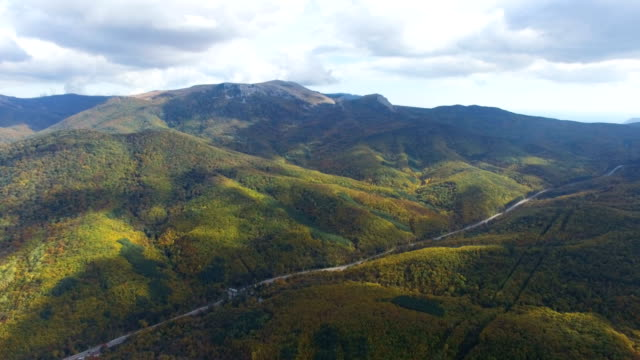 AERIAL: Highway in multi colored mountain forests
