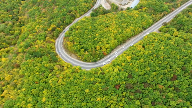 aerial: highway in multi colored mountain forests - multicopter stock videos & royalty-free footage