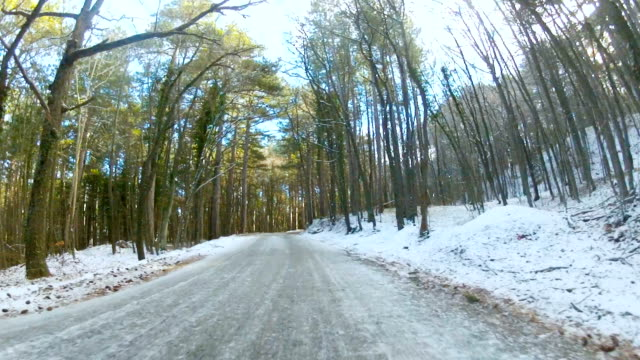 highway through a forest in winter, GoPro