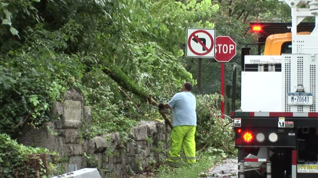 highway workers clean up fallen trees and branches from bronx river parkway after flooding was caused by hurricane irene / chainsaws used to cut... - hurricane irene stock videos & royalty-free footage
