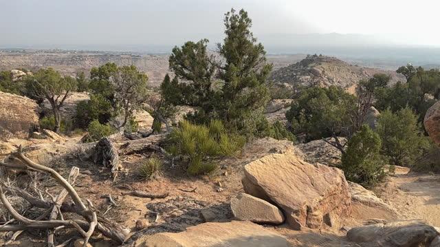 stockvideo's en b-roll-footage met hike in western colorado arid high desert on a sunny summer day 4k video series - kei
