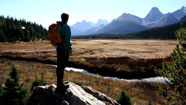 hiker ascends boulder in mountain meadow - alberta stock videos & royalty-free footage
