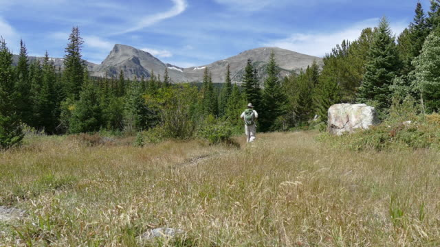 hiker backpacker man hiking indian peaks wilderness sawtooth mountain colorado - wilderness area stock videos & royalty-free footage