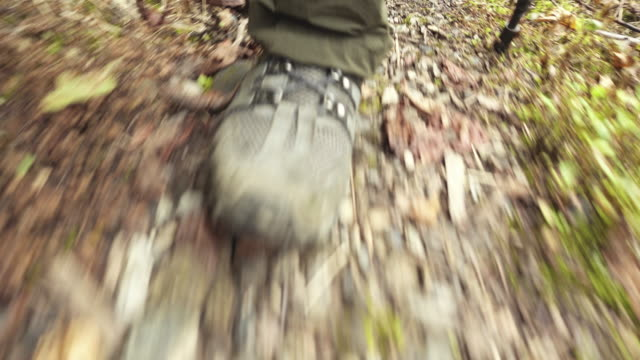 hiker foot in woods - boot stock videos & royalty-free footage
