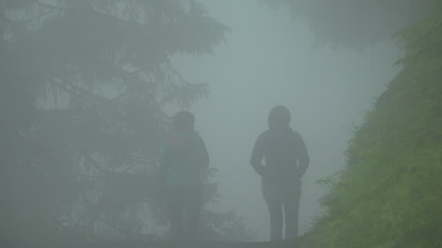 hiker in fog, muerren, bernese alps, canton of bern, switzerland - bernese alps stock videos & royalty-free footage
