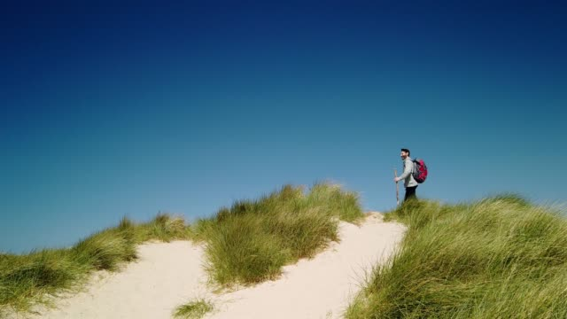 hiker in the dunes on the north sea island sylt - wanderer in den dünen von sylt - tina terras michael walter 個影片檔及 b 捲影像