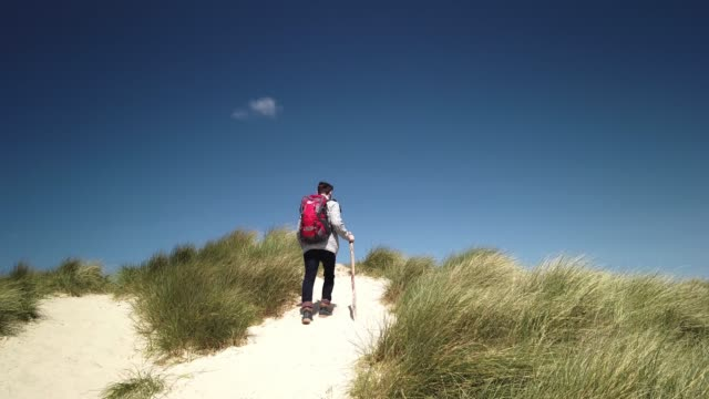 stockvideo's en b-roll-footage met hiker in the dunes on the north sea island sylt - wanderer in den dünen von sylt - tina terras michael walter