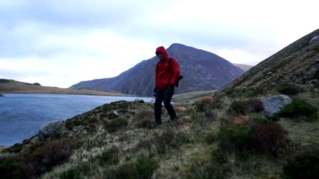 hiker makes his way through rugged highland environment admiring the views - wales stock videos & royalty-free footage